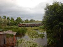 2016-07-18, FilboTürkei, Region Karasu,DSCN1632