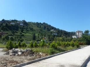 2016-09-08,Filbo Türkei, Region Rize Teeanbau,DSCN2048