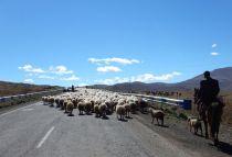 2016-09-29-filbo-armenienregion-vaykdscn2491