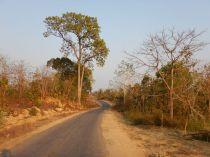 2017-03-13, Filbo Myanmar,Reg. Talin,DSCN4295