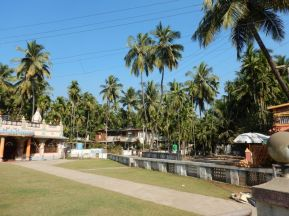 2017-01-07, Filbo Indien,Reg. Alibag,DSCN3638