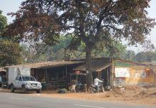 2017-01-17, Filbo Indien,Reg. Dharbandora,DSCN3772