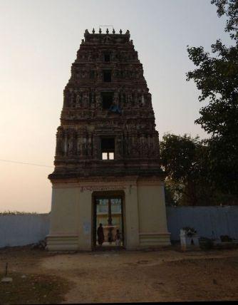 2017-01-24, Filbo Indien,Reg. Dupadu Darsi,DSCN3900