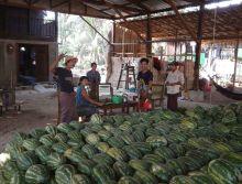 2017-03-22, Filbo Myanmar,DSCN4490