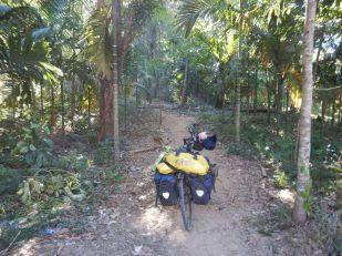 2017-04-01, Filbo Myanmar,Reg. Nabule,DSCN4634
