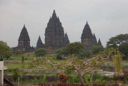 2017-06-12, Filbo Indonesien,Yogyakarta,DSCN5640