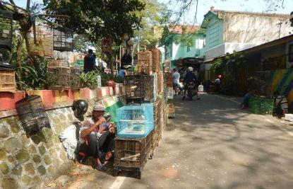 2017-06-20, Filbo Indonesien,Malang,DSCN5742