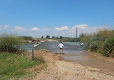 2016-07-03,Filbo, Griechenland,Region Komotini,DSCN1497