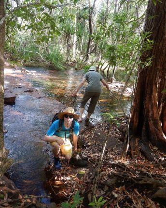 2017-07-08, Filbo,Australien Litchfield,DSCN6145