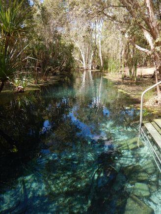 2017-07-14, Filbo,Australien Bitter Springs,DSCN6227