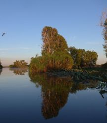 2017-07-21, Kakadu,Yellow Water,Do. P1090220