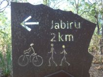 2017-07-27, Kakadu,Jabiru,Do.P1090671