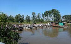2016-05-16, Filbo,Italien 5, Region Verona,DSCN0632