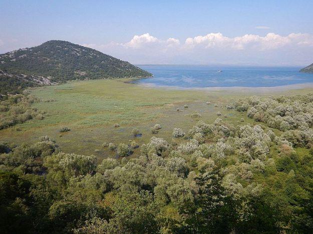 2016-06-08,Filbo,Montenegro,DSCN1181