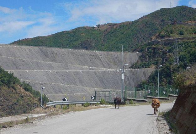 2016-06-13,Filbo,Albanien,Region Koman Fierze,DSCN1264