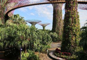 2018-02-01, Filbo, Singapur,IMG_0098