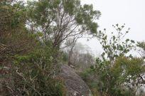 2018-03-28, Filbo Australien, Cairns,IMG_0319
