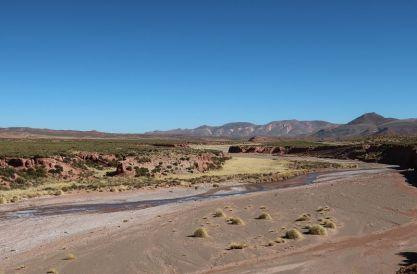 2018-08-16, Filbo Argentinien, Reg. Azul Pampa,_IMG_2127
