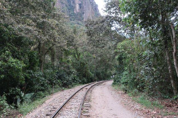2018-09-20, Filbo Peru, Reg. Machu Picchu,IMG_2389