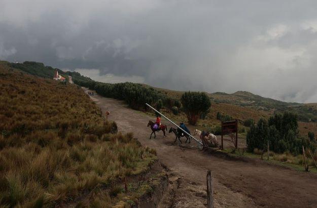 2018-10-27, Filbo Ecuador, Rucu Pichincha,IMG_2690