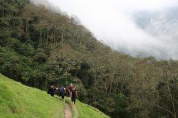 2018-12-21,Filbo Kolumbien,Valle Cocora,120132_IMG_3321