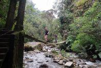 2018-12-21,Filbo Kolumbien,Valle Cocora,123605_IMG_3328