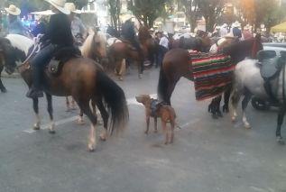 2018-12-23,Filbo Kolumbien,Riosucio,_180221