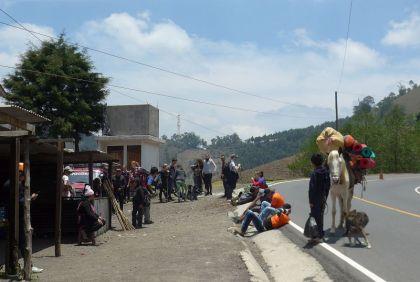 2019-04-15, Guatemala,La Soledad,2200m, Do,P1150439
