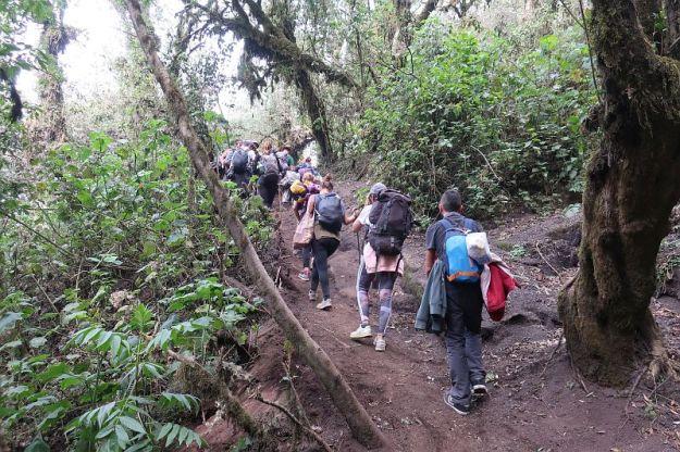 2019-04-15,Filbo Guatemala, Acetenango,IMG_4126