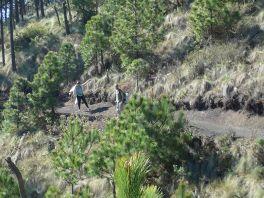 2019-04-16, Guatemala,Acetenango,3800m, Do,P1150532