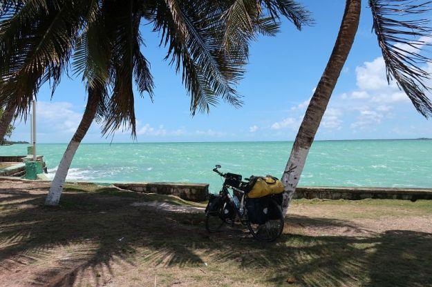 2019-05-30, Filbo Belize,Reg. Corozal, IMG_5023