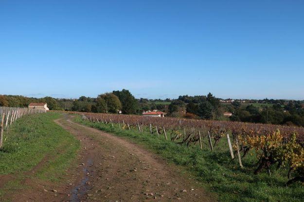 2019-11-14,Filbo France,Reg. Ancenis ,IMG_5851